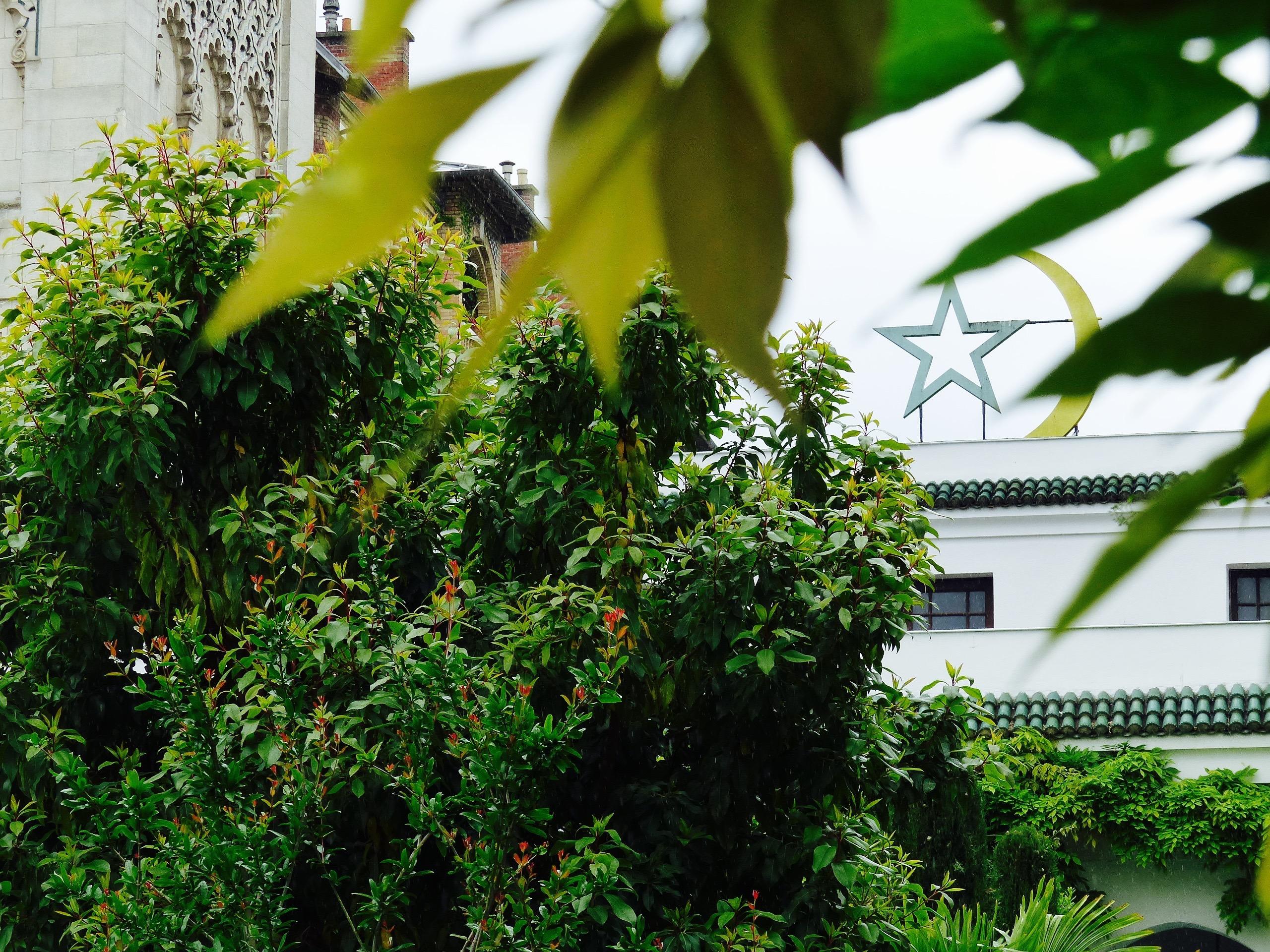Paris Orient Culture Blog