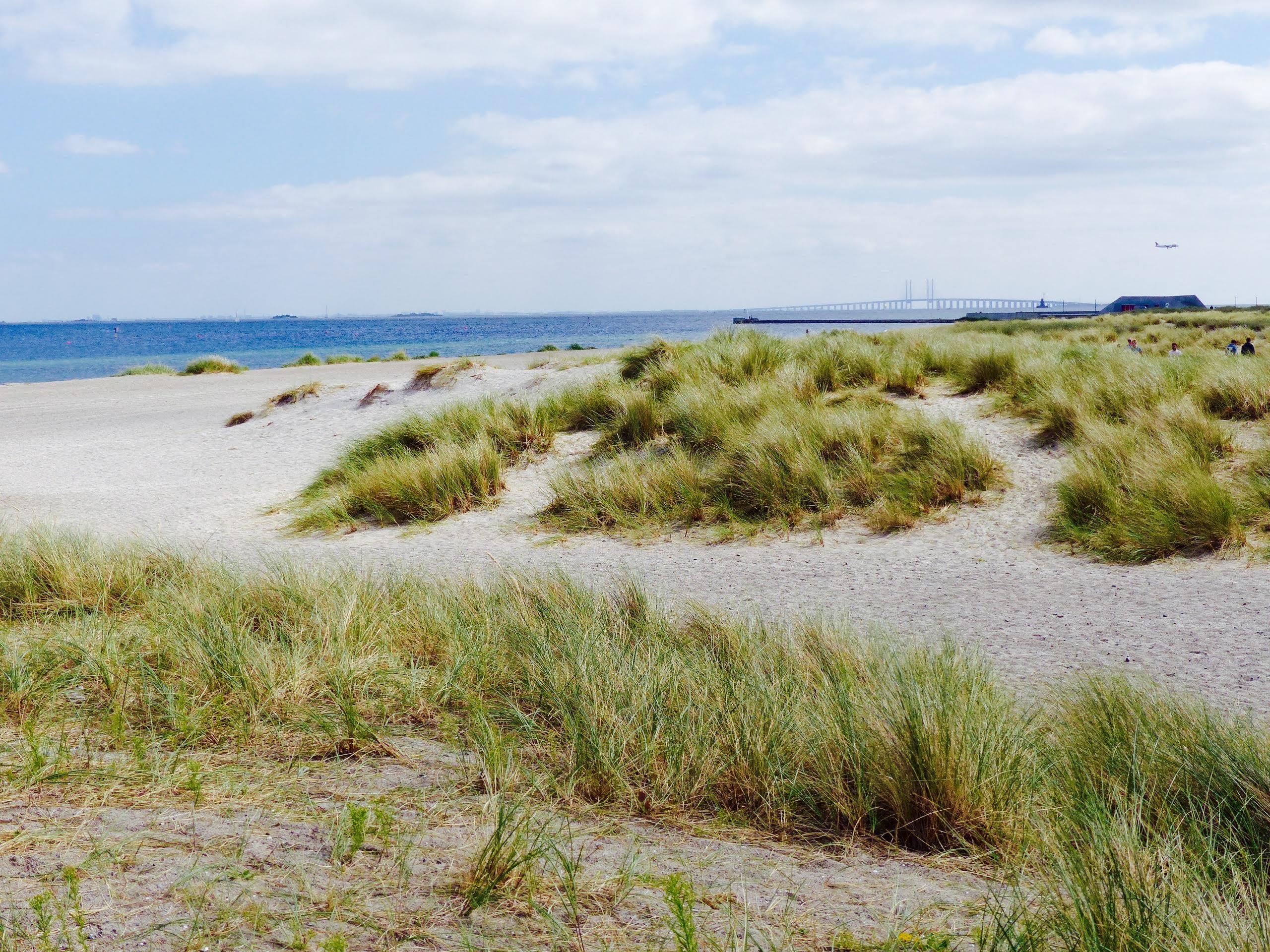 blog voyage copenhague plage nature