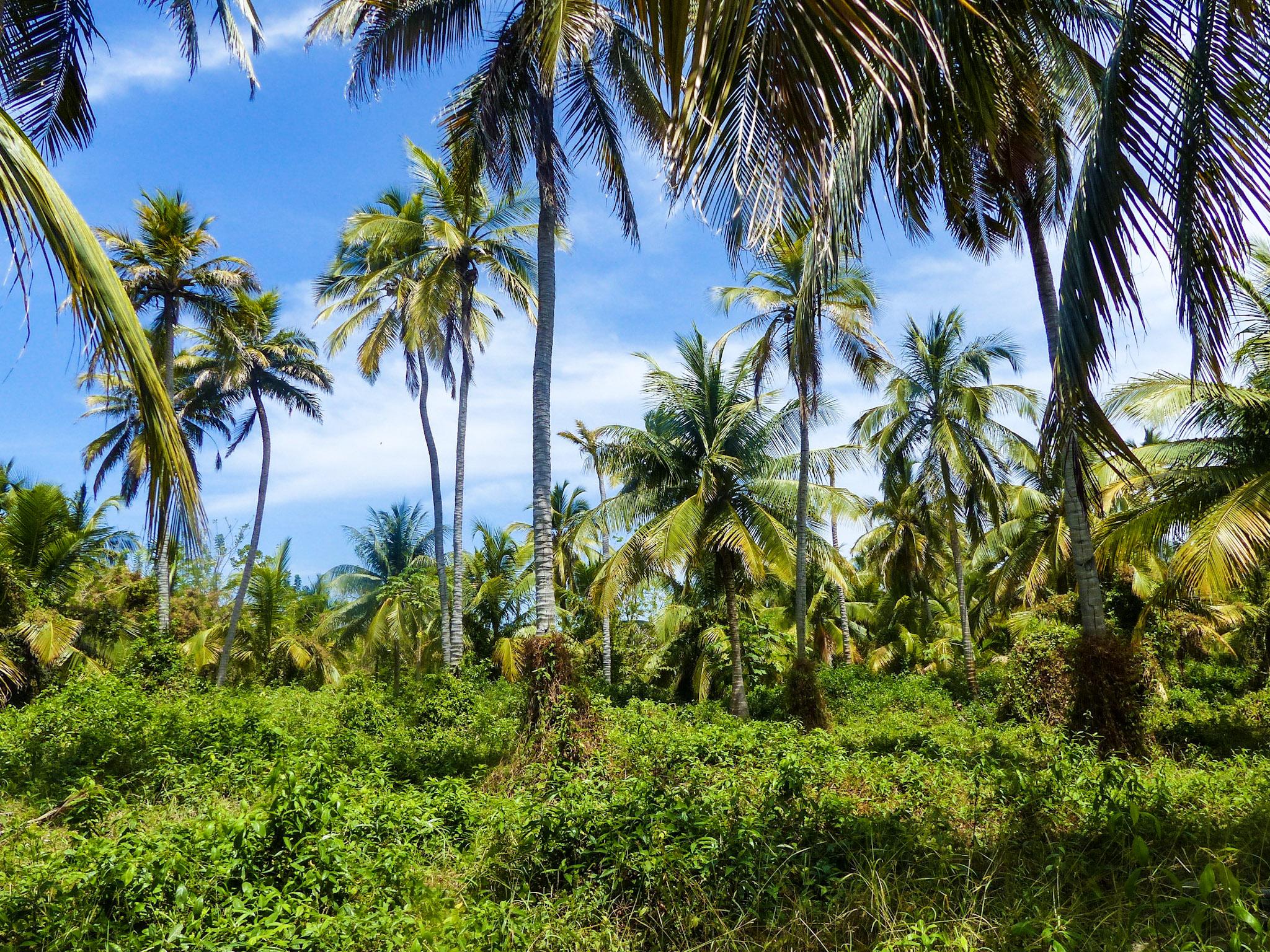 blog voyage colombie san bernardo île mucura