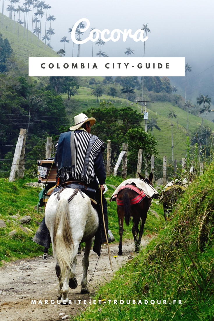 Blog Voyage Colombie Cocora Salento