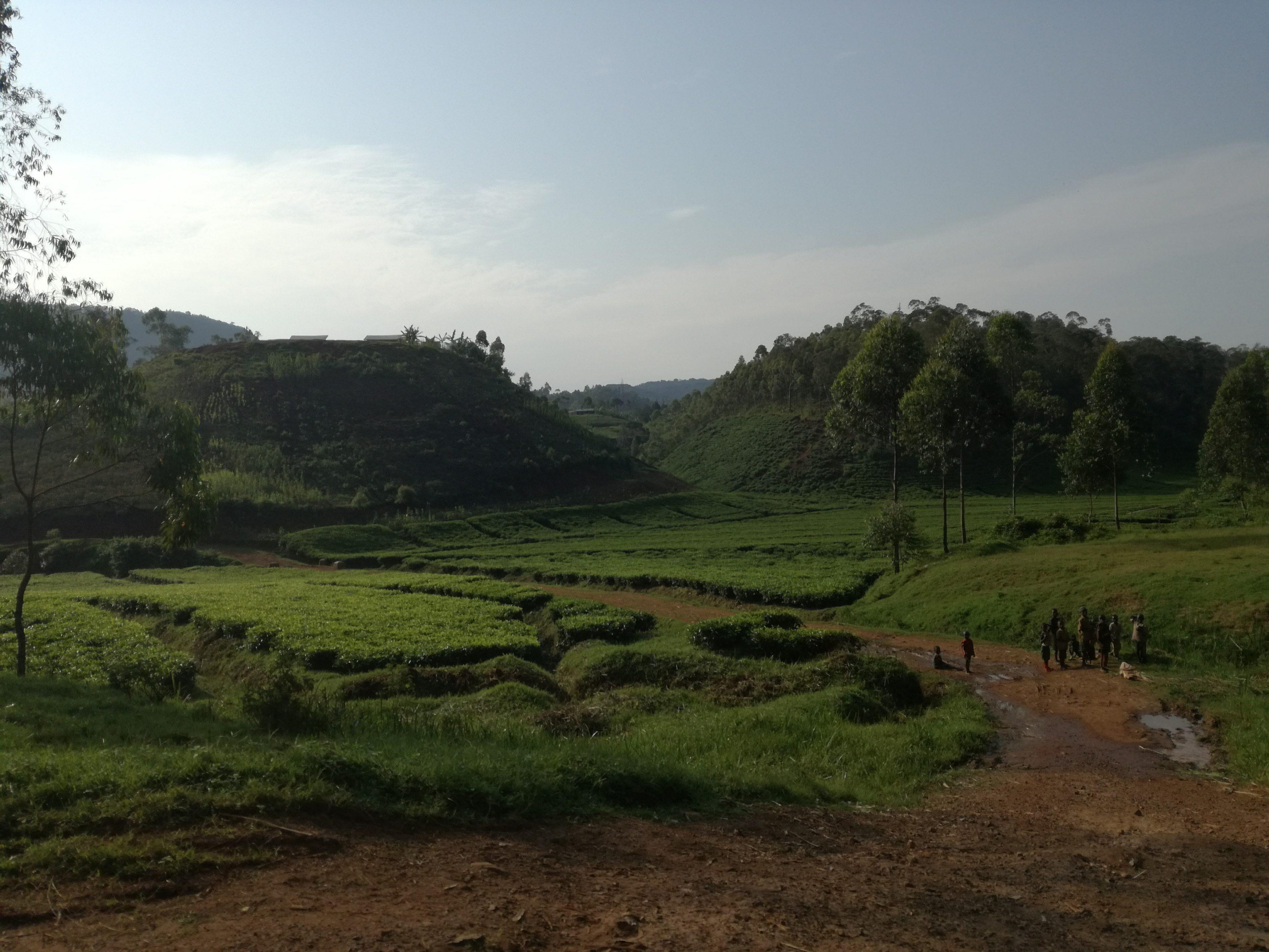 Blog voyage Rwanda Joli Tropissme